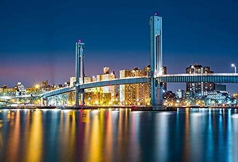 Gzhq 9x6ft Célèbre Pont à New York Toile Fond Vinyle