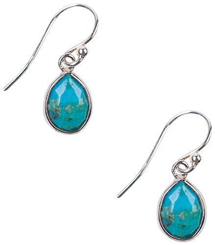 Chan Luu Sterling Silver Petite Turquoise Drop Earrings Chan Luu Silver Earrings