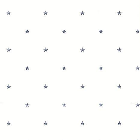 Amazon.com: Brewster ctr44043 Marlena estrellas azules ...