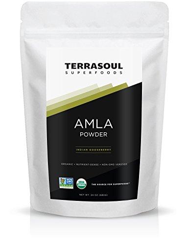 Terrasoul Superfoods Amla (Amalaki) Berry Powder (Organic), 24-ounce