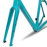 ICAN Carbon X-Gravel Bike Frameset FM696 BSA