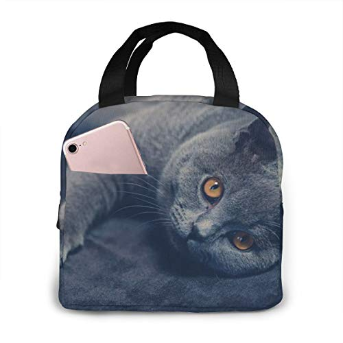 British Shorthair Cat (2) Lunch Bag,Reusable Insulated Lunch Bag Cooler Tote Box With Front Pocket Zipper Closure For Woman Man Work Picnic