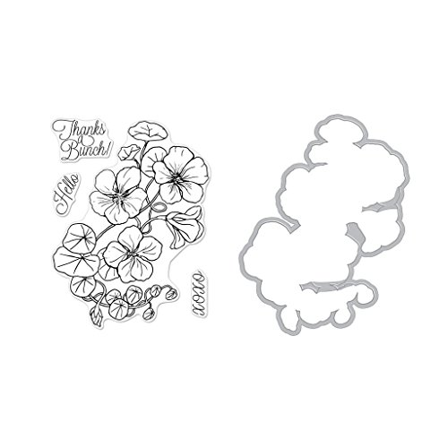 Hero Arts Clear Stamps and Frame Cuts Die Combo, Hero Florals Nasturtium by Hero Arts