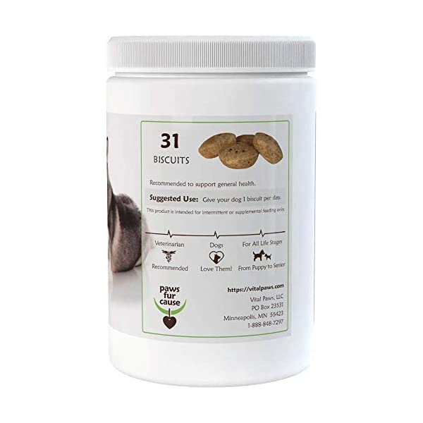 Vital Paws for Huskies | Daily Superfood Biscuits | Dog Multivitamins & Supplements | Contains Omega-3 Fish Oils, Turmeric, Probiotics, and More! 2