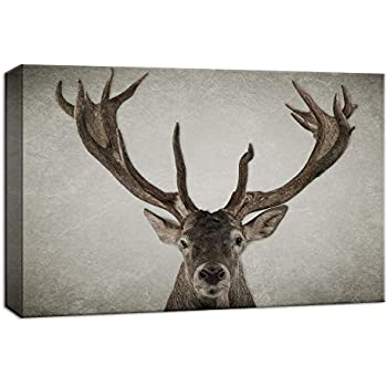 NWT Canvas Wall Art Wildlife Deer with Big Horn Painting Artwork for Home Decor Framed - 24x36 inches