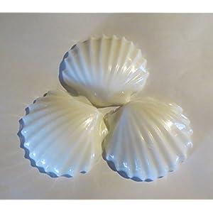 41GiSQpOu2L._SS300_ Seashell Wedding Favors & Starfish Wedding Favors