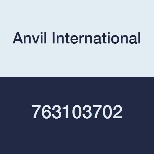 Anvil International 0763103702 Metal Series 92HS Stainless Steel Braided Hose, 24'' Length, 3/4'' Size