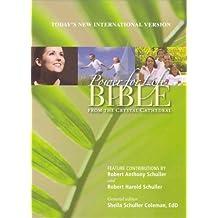 Power for Life Bible TNIV BURG BdLthr