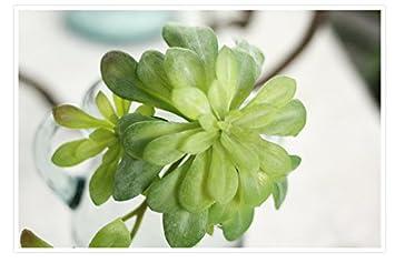 Jiale3536 Kunstliche Blumen Saftige Kunstliche Pflanzen Landschaft