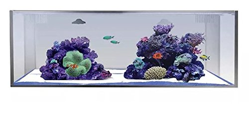 Innovative Marine Nuvo Fusion PRO 30 Gallon Long AIO Aquarium with Mighty Jet DC Return Pump Filter Sock Leveling Mat Media Included All-in-one MicroMag Custom Caddy Assembled Mesh Screen