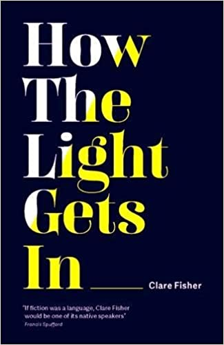 Image result for how the light gets in clare fisher
