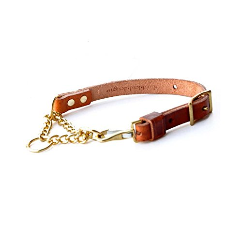 Leather Martingale Dog Collar from Bold Lead Designs (Large) (Dog Martingale Lead)