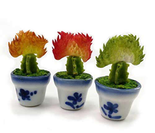 TheBestBuy 3 of Dollhouse Miniature Cactus Plant Euphorbia susannae in Ceramic Pots from TheBestBuy