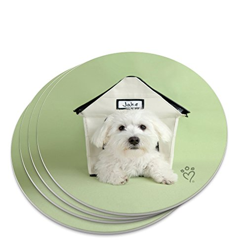 Bichon Frise Maltese Puppy Dog in House Novelty Coaster Set (Dog Frise House Bichon)