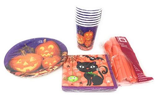 Real Pumpkin Mini Party Bundle: Two 8 Packs