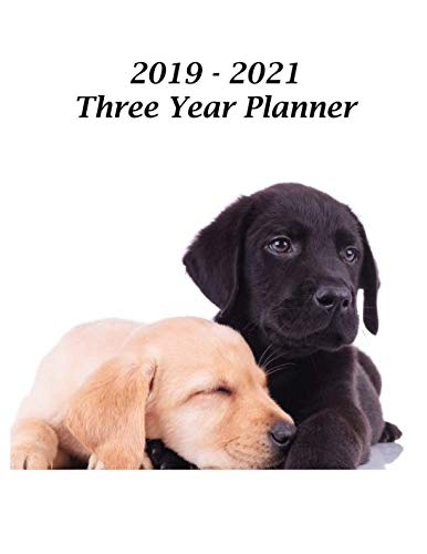 - 2019 - 2021 Three Year Planner: Labrador Retriever Puppies Cover - Includes Major U.S. Holidays and Sporting Events