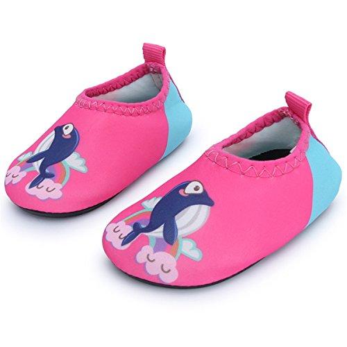 JIASUQI Kids Boys Girls Fashion Barefoot Aqua Water Skin Shoes for Beach Sand Swim Aerobics,Pink Dophin 12-18 Months