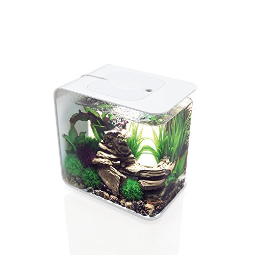 biOrb FLOW 30 Aquarium with LED Light – 8 Gallon, White by biOrb