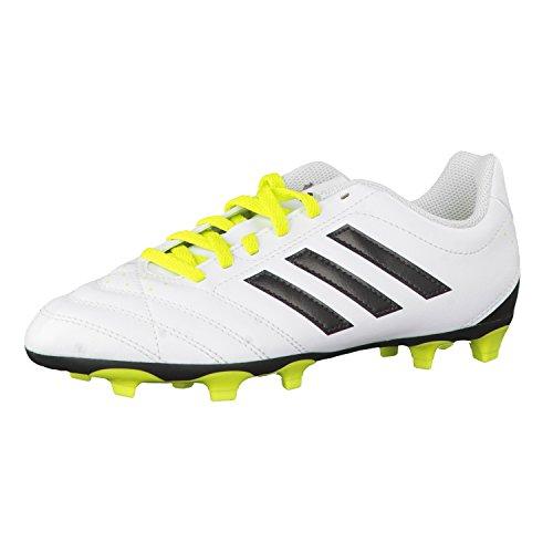 Para niños de Adidas botas de fútbol FG J Goletto V White/black/green