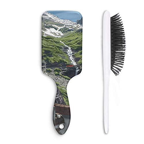 HairBest Montana Funny Cushion Hairbrush Plastic Detangling Brushes Great On Wet Or Dry Hair For Women Men Kids Stimulate Scalp Help Growth Add Hair Shine