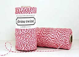 1 X Peppermint Divine Twine