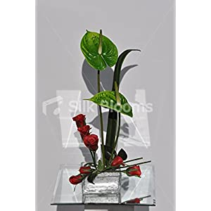 Minimalist Botanical Anthurium & Red Rose Floral Arrangement 74