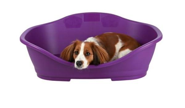 Perro de dormir cama de plástico, tamaño 2: 56/68 cm, plástico), color beige: Amazon.es: Productos para mascotas