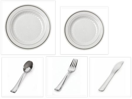 500 Pieces Plastic China Plate Silverware Combo for 100 people WHITE with SILVER Reflection Masterpiece Like