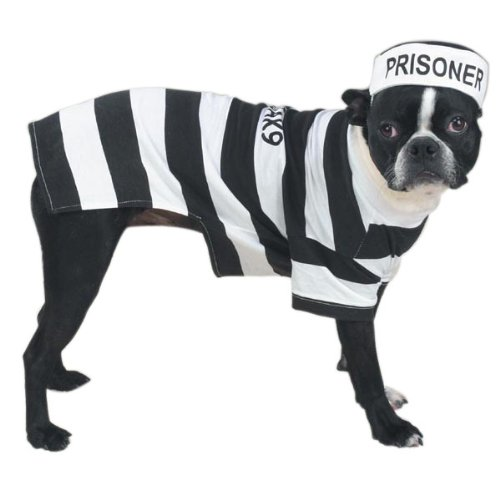 XX-Large 30in Casual Canine Prison Pooch Dog Pet Costumes by Pet (Criminal Dog Costume)