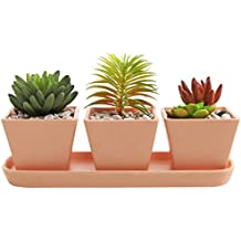 3 inch Small Square Terracotta Clay Garden Planter Pots with Oval Drainage Tray, Set of 3