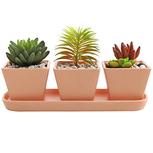 - 3 inch Small Square Terracotta Clay Garden Planter Pots with Oval Drainage Tray, Set of 3