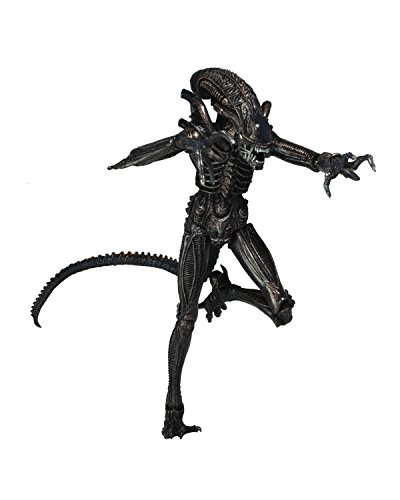 "NECA Aliens 7"" Scale Action Figure Series 5 Genocide Alien Black Action Figure"
