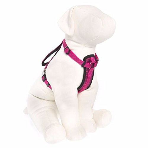 KONG Comfort Padded Harness Fuschia Small by KONG