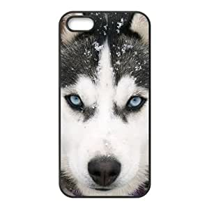 Cool Beautiful Blue Eyes Dogs Canine Siberian Husky Durable Rubber Iphone 5 Case