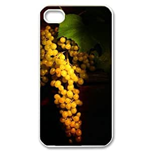 TYH - Fashion Cases Seasonal Back iPhone 5/5s Cases Cover ending phone case