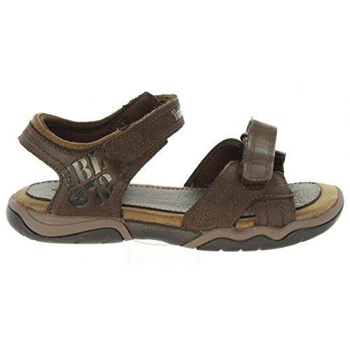 - Timberland Boy's Oak Bluffs Leather 2-Strap Preschool Dark Brown 13 M