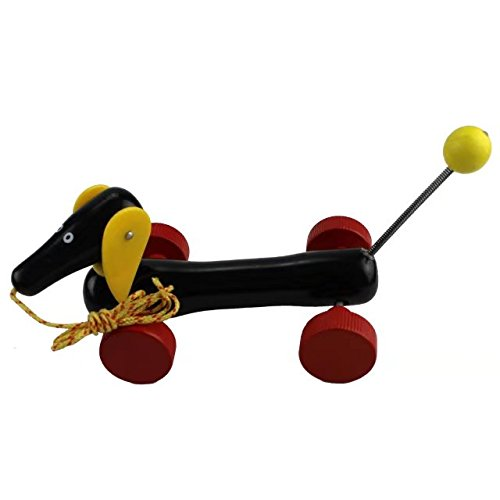 Brightly Colored Cute Dog Pull Along Toys for Toddler Baby with String; Walk Along Puppy Wooden Non-Toxic (Primark Halloween Top)