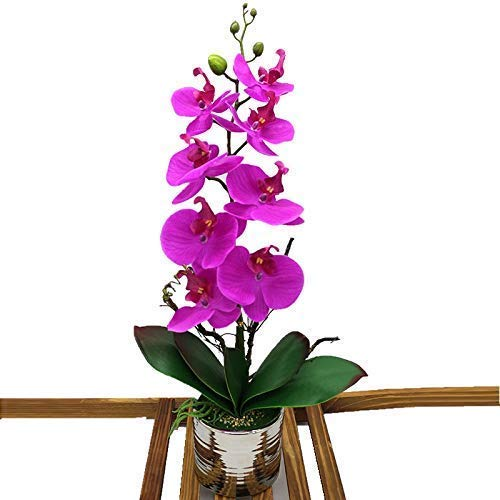 LOUHO Artificial Phaleanopsis Arrangement with Vase Decorative Orchid Flower Bonsai Table Centerpieces (red Purple)