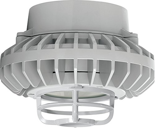 Dg Lighting Led in US - 5