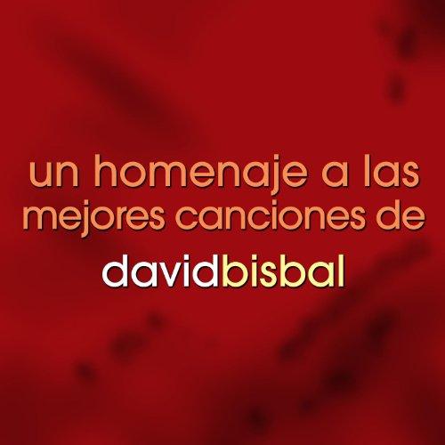 Un Homenaje A Las Mejores Canciones De David Bisbal by