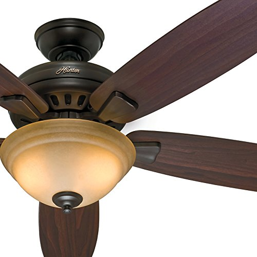 Hunter Fan 54 inch Ceiling Fan in Premier Bronze with Light Kit and Remote Control (Certified ()