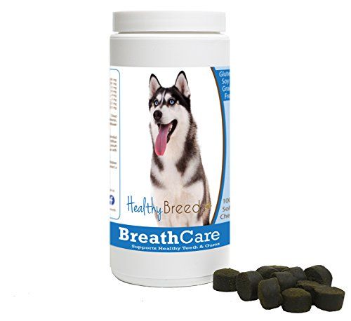 Healthy Breeds Dog Breath Care Soft Chews for Siberian Husky - Over 100 Breeds - Veterinarian Formulated to Support Healthy Teeth & Gums - Easier Than Spray or Additives - 100 Chews by Healthy Breeds