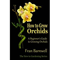 How to Grow Orchids: A Beginner's Guide to Growing Orchids