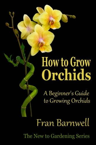 How to Grow Orchids: A Beginner