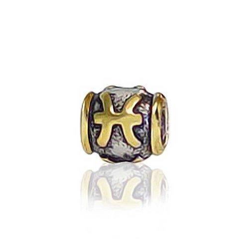 Zodiac Symbol Sign Italian Charm - 1
