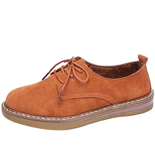 Et En RondcoloréMarronTaille Lacets Bout Oxford Hhgold À Cuir UkMarron De Chaussures 5 Femmes Daim Sport Pour ymOvwnN80