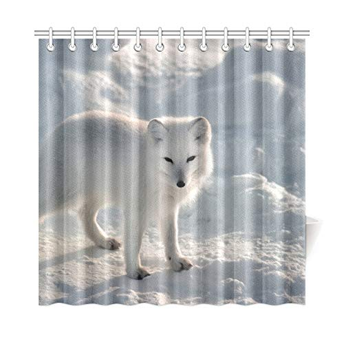 - VNASKL Home Decor Bath Curtain Animal Lovers Arctic Fox Wallpaper Polyester Fabric Waterproof Shower Curtain for Bathroom, 72 X 72 Inch Shower Curtains Hooks Included