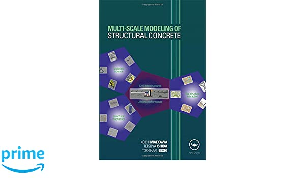 Multi-scale Modeling of Structural Concrete