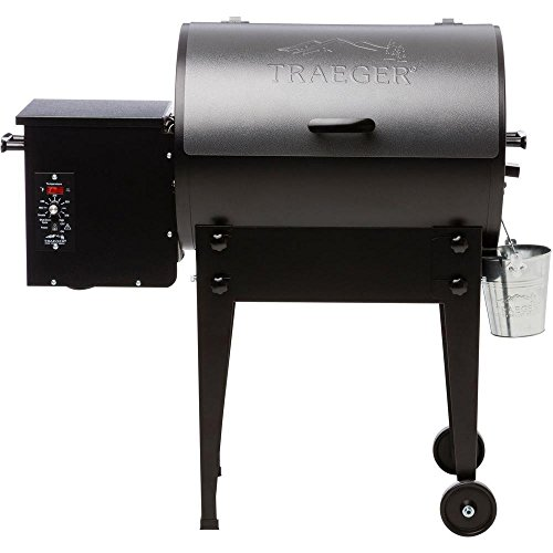 Traeger Tailgater Elite 20 Wood Pellet Grill and Smoker in Silver Vein