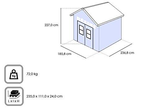 Chalet-Jardin 12 - 931473 del Coliseo 68 abrigo resina marrón 185, 8 X 236, 8 x 227 cm: Amazon.es: Jardín